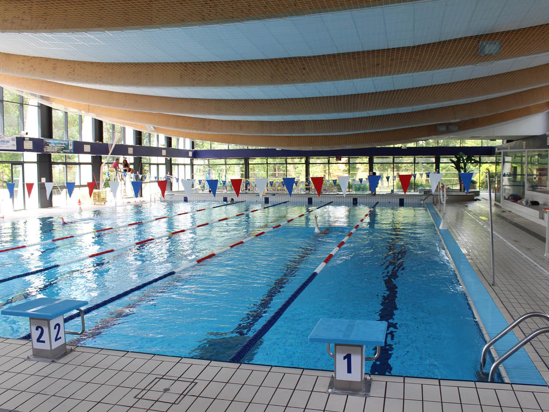 bassin piscine faisanderie pays de fontainebleau